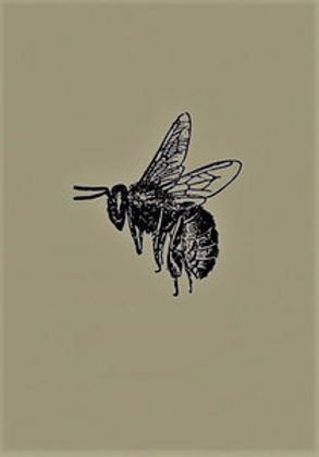 Lord of Bee