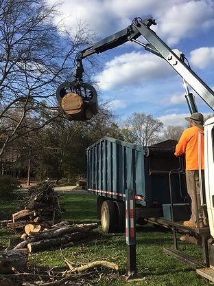 Tree Service Near Waxhaw