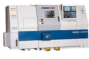 puma300.jpg