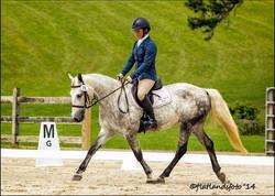 We develop safe sport ponies too!