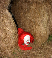 Haunted Hay maze.jpg