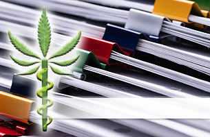 """A cannabis leaf with a snake climbing up the stem overlaying organized files. """"Pharma standards"""" overlays the image."""