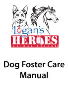 Dog Foster Care Manual-Thumb.jpg
