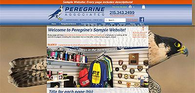 Sample Website.jpg