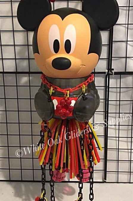 Mickey Hide-Out