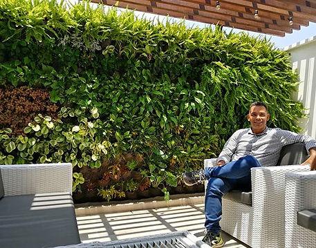 Los muros verdes alivian el estress y me