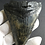 Thumbnail: VERY LARGE MEGALODON TOOTH