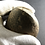 Thumbnail: VERY LARGE STONE AGE AXE