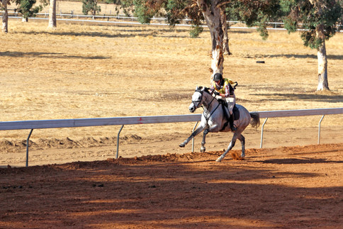 quindanning-races-2014-IMG_2029.JPG