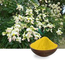 Quercetin Plant.jpg