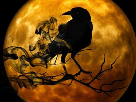 Halloween, etc.
