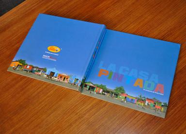 Carátula y contracarátula libro La casa pintada 2009
