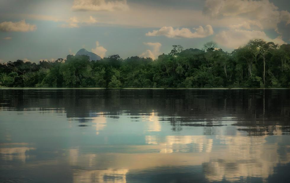 Las aguas mansas y oscuras del río Inírida. 2019.