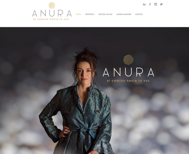 Diseño de imagen para ANURA