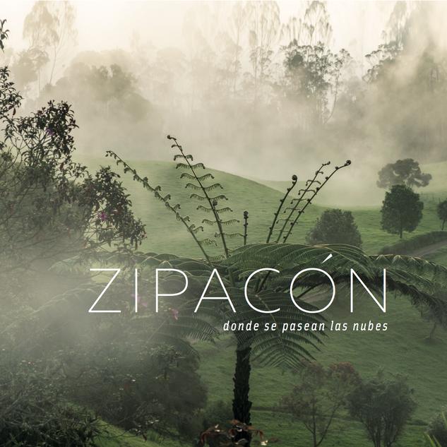 Diseño editorial y gráfico libro Zipacón.