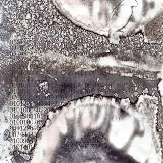 El azar produce imágenes insólitas sobre soportes inesperados.
