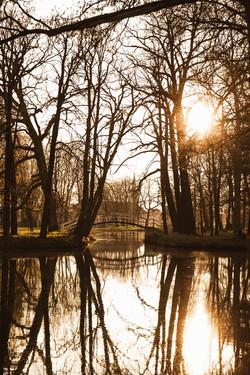Frühlingserwachen im goldenen Licht