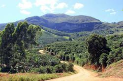 Caminho-para-reserva-Pedra-Dourada