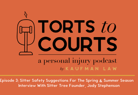 Torts To Courts Episode 3: Sitter Safety Suggestions