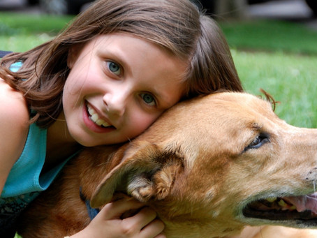 Do's And Don'ts: Child + Dog Interactions