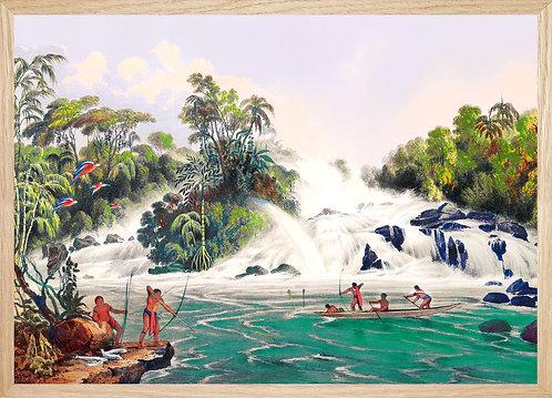 Illustration  Scène de pêche en Guyane