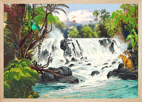 Illustration   La Cascade - Guyane