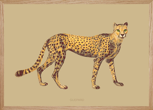 Illustration murale GUEPARD fond Savane
