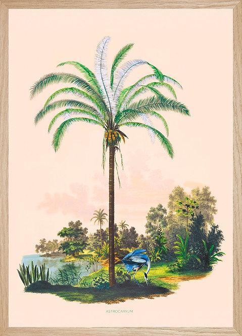 Illustration murale PALMIER ARGENTE