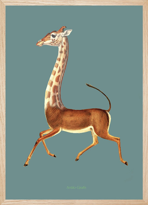 Illustration murale ANTILOGIRAFE