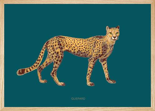 Illustration murale GUEPARD fond bleu canard