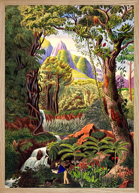Illustration murale JUNGLE 3