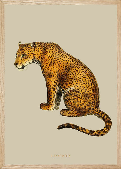 Illustration murale LEOPARD
