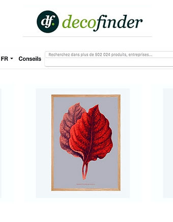 Pradisio Imaginarium sur une page web dans decofinder