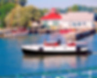 Day or Morning Cruise on Jensen Charters in South Haven Michigan