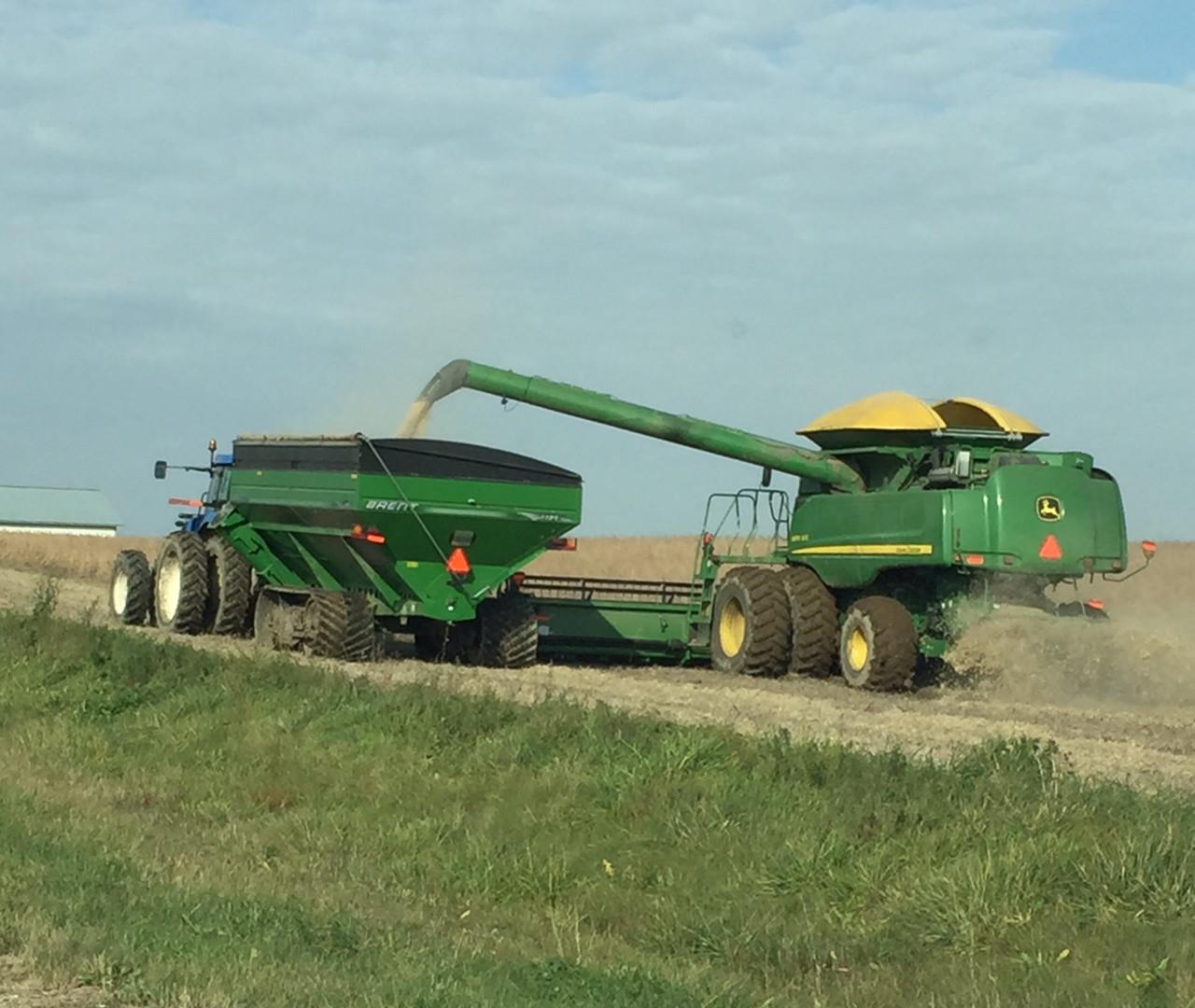 soybean harvest2016.jpg