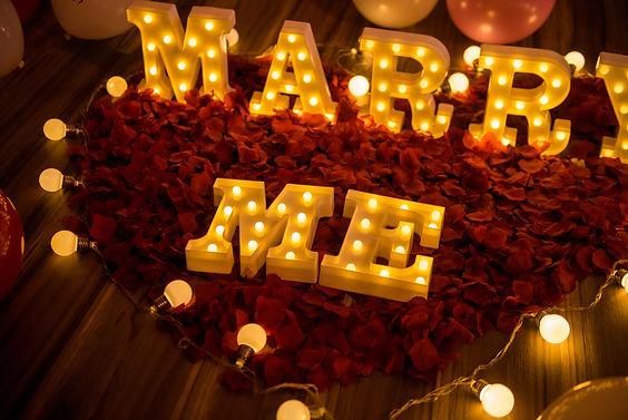 求婚道具出租-玫瑰花瓣