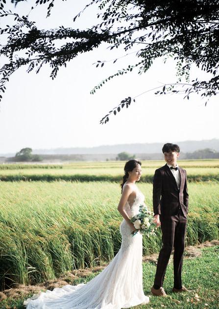 台中草地美式婚紗