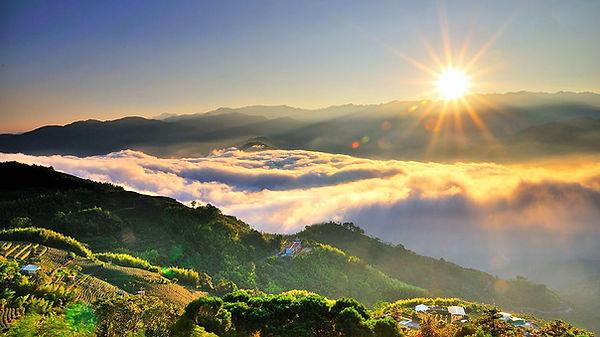 sunrise │Alishan national scenic area, Marriage Proposal, Taiwan