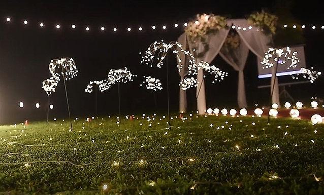求婚道具租借-蒲公英燈 │ 台中求婚道具租借、求婚佈置、求婚企劃