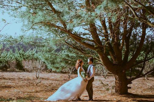 臺中九天黑森林浪漫婚紗攝影
