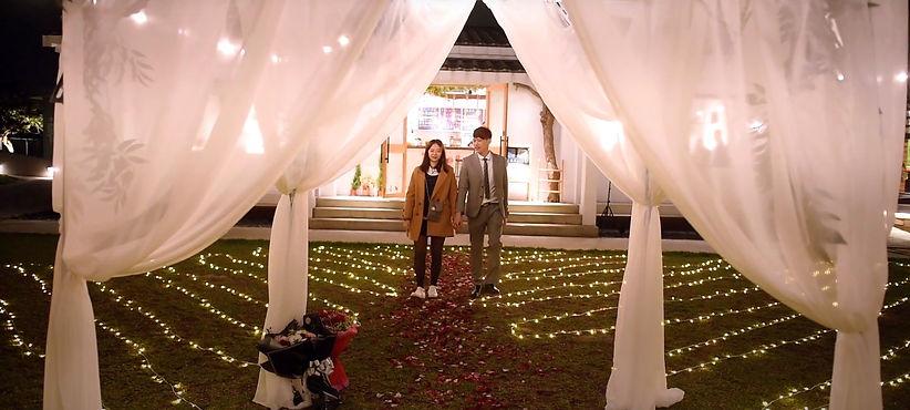 求婚道具出租-玫瑰花瓣紅毯