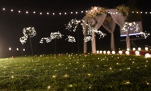 求婚道具租借-蒲公英燈 │ 台中求婚道具租借、求婚佈置、求婚企劃、草地求婚