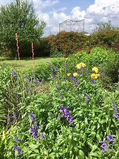IMG_0305.jpg flowers.jpg