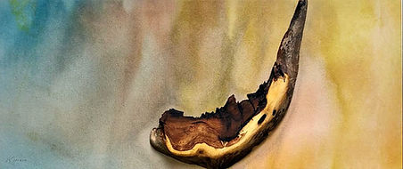 Desert Wood.jpg