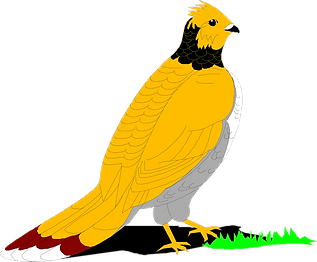grouse-46524_1280.png