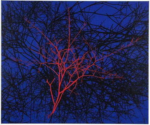 RED TUMBLEWEED II #1/50