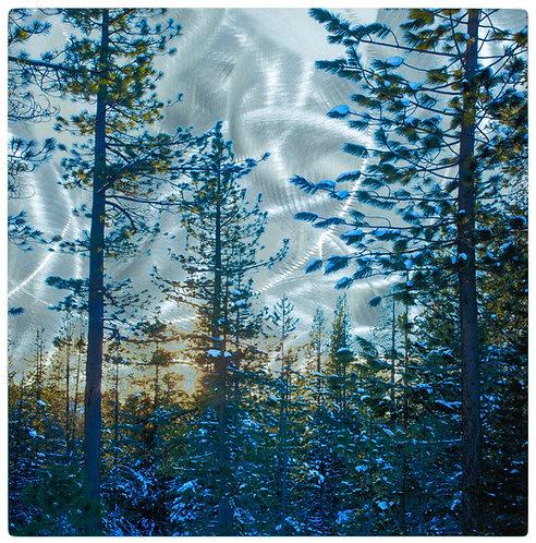 Sierra Sunset (winter w/ snow) Truckee