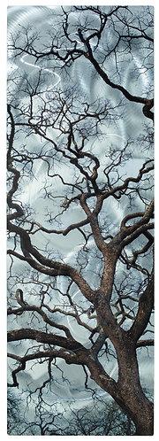 Napa Oak #9816