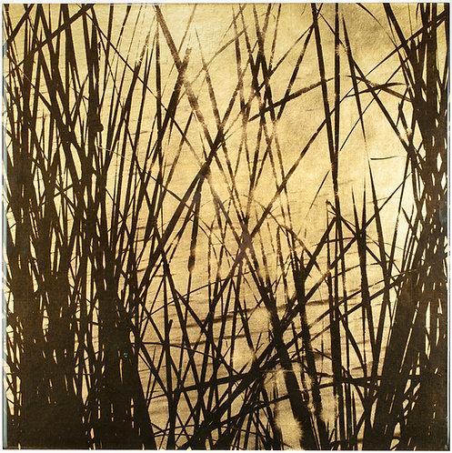 Golden Cattails #09081301 #3