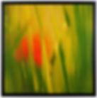 Golden Oasis #6071 #3 20x20 AD.jpg
